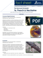 Peach-Nectarine Pests & Mgmt