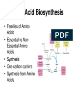 451Amino Acid Biosynthesis