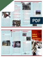 Perils of Impunity 2014