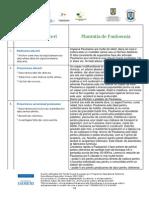 Plantatie de Paulownia