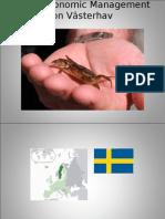 Socio Economic Management in Grötö