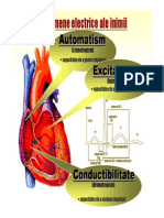 Curs 2 (Fenomene Electrice Cardiace)