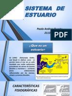 sistema de estuario.pptx