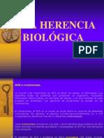 La Herencia Biologica