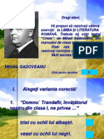 cheia de mihail sadoveanu- proiect