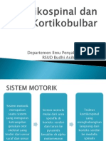 Kortikospinal Dan Kortikobulbar Zairi