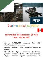 Biodiversidad en El PERÚ III
