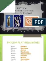 PHYLUM PLATYHELMINTHES.pptx
