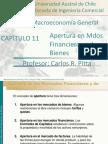 Apertura en Mercados Financieros y de Bienes. Blanchard