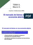 El Mercado de Bienes en Una Economia Abierta Capitulo N_19