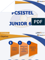Pcsistel Jr 6