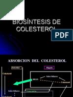 16........Biosíntesis de Colesterol[1]