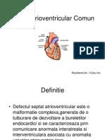 Canal Atrioventricular Comun
