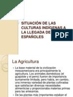 Situación de Las Culturas Indígenas a La Llegada