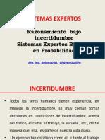 Clase Sistema Experto Probabilistico