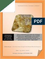 tuberculo-malaga-producto-snaks.pdf