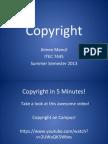 mancila-copyright