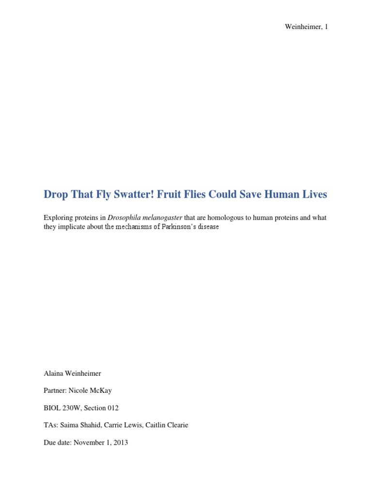 drosophila fly lab report bio w lab report plasmid dna jenny  bio w lab report plasmid dna