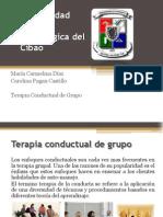 Terapia Conductual de Grupo