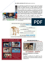 REGALO.pdf