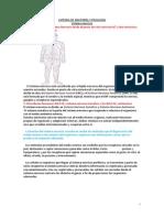 Catedra de Anatomía y Fisiología