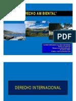 Derecho Ambietal Internacional 2013