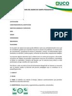 Estructura Del Diario de Campo