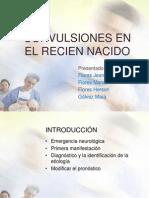 Convulsiones en El Recien Nacido Ppt2007
