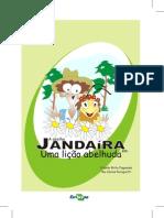 Abelha_Jandaira
