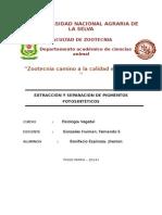 Extraccion de Pigmentos Fotosinteticos 1