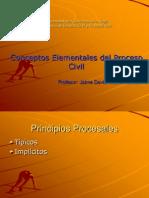 Conceptos Elementales Del Proceso Civil