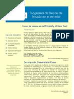 Folder University of New York.pdf