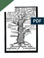 Dossier bebop.pdf
