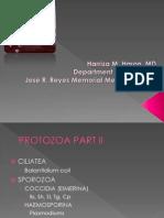 Protozoa Powerpoint