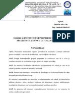 79429192 Norme Si Instructiuni Proprii SSM IT C