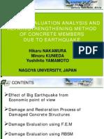 Damage Evaluation Analysis