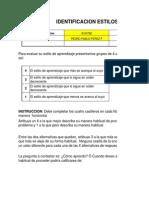 Estilos de Aprendizaje Formato-1
