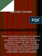 agnosiasvisuales-111206154733-phpapp01