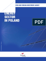 4.1.9. Sektor Energetyczny w Polsce. Profil Sektorowy en