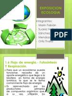 1.6-1.7 Flujo de Energia Fotosintesis y Respiracion