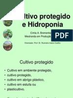 5Hidroponia