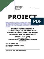Proiect Strungar.pdf