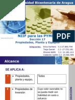 Sección 17- PP&E-participante (1)