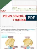 1) PELVIS 2014 - Michael Chavez Veliz (AEMH -SMP)