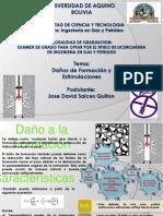 DañoalaFormacionyEstimulacion-DavidSalces