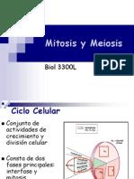 12. Xii Mitosis y Meiosis