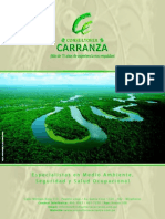 Brochure Consultoria Carranza[Pequeño]