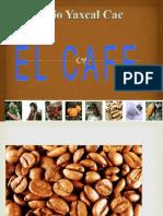 Presentacion Del Cafe