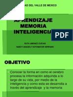 Memoria, Inteligencia