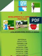 DAP Powerpoint Final Educ214